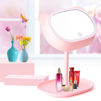 Pink Multifunction Adjustable 180 Degree Rotating Makeup Mirror with Light Cosmetics Holder Bedroom Night Light Table Lamp