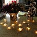 10 m 100LED Natal Luz Da Estrela LED Fada Luz Cordas iluminação do feriado de Natal luzes de decoração de casamento Festa Da Escola Da Família estrela