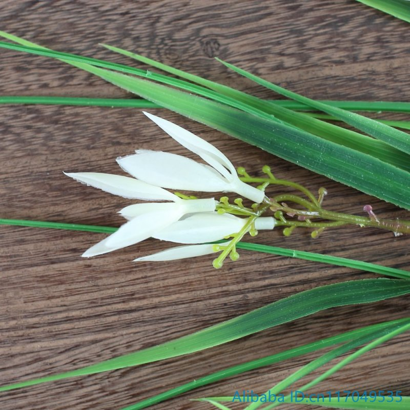 1 pcs artificial plastic white flowers green long leaves grass plant 1 pcs artificial plastic white flowers green long leaves grass plant home decoration f372 in artificial dried flowers from home garden on aliexpress mightylinksfo
