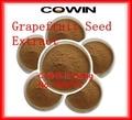 O envio gratuito de Semente de Uva Extrato de semente de Uva extrato 10: 1 extrato natural da planta 100g