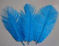 wholesale 50 PCS Lake blue  ostrich feathers 6- 8 inches / 15-20 cm