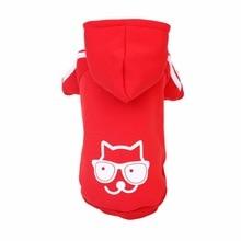Cute, Warm Winter Sphynx Cat Hoodie / Sweater / 3 Colors