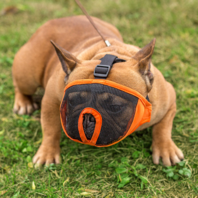 Új design Pet Dog Nylon füles lélegző Mask Bark Mesh kutya fül - Pet termékek