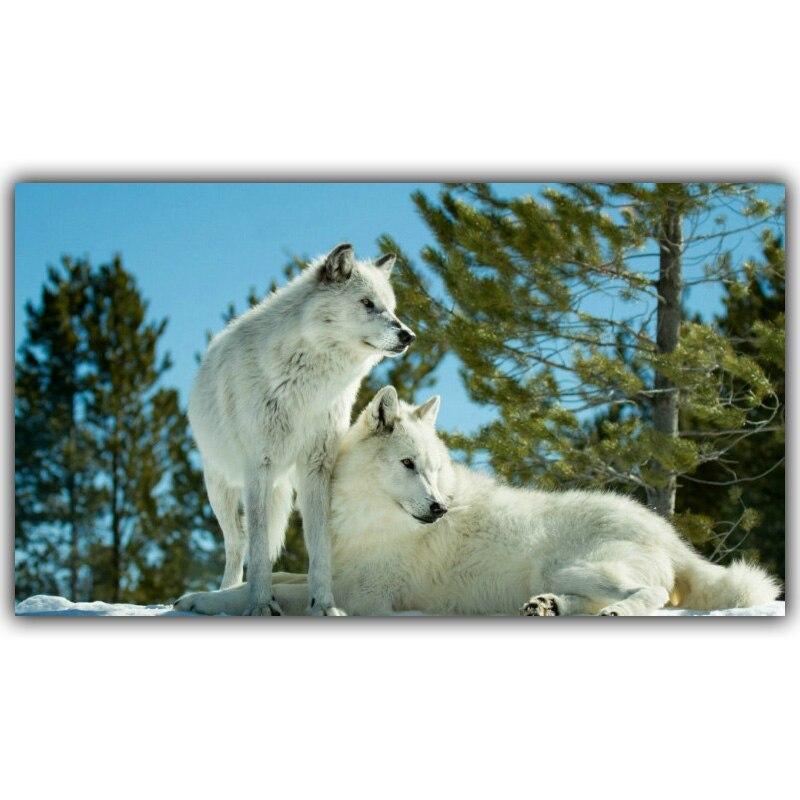 Timberwolves Animal Landscape Poster Art Silk Poster Home