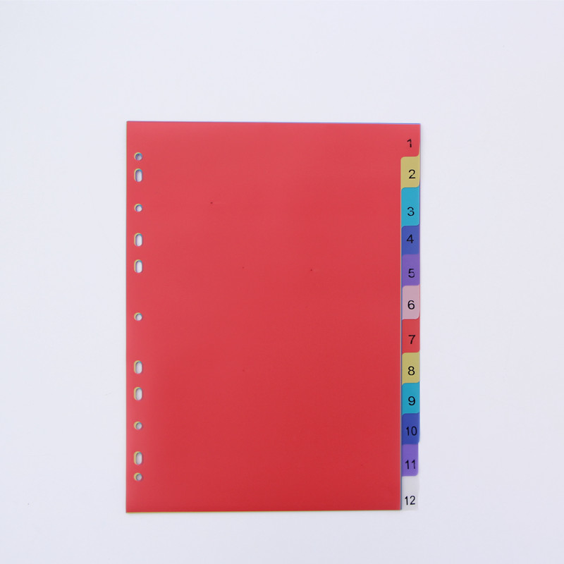 12sheets A4 Colored PP Binder Index Dividers Office School Stationery Accessory Spiral Month Divider Archives Files