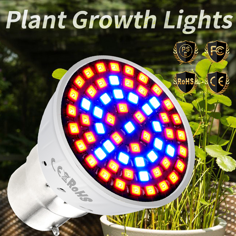 B22 Lamp For Plants Gu5.3 Hydroponics Growing Light 220V E14 Phytolamp GU10 Fito Led Bulb Full Spectrum E27 Led Indoor Grow Tent