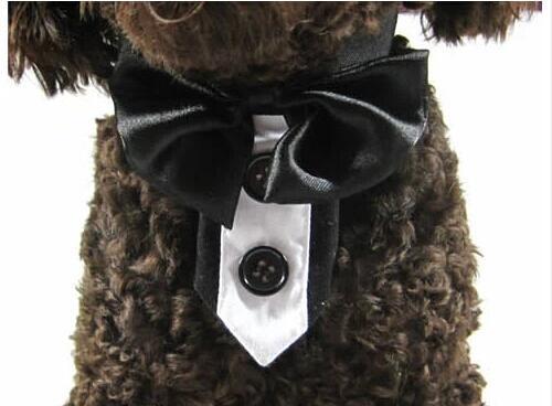 Modesto Stile Britannico Pet Dog Cat Nozze Grooming Bowknot Tie Doggy Cravatte Forniture Cucciolo Papillon Prodotti Per Animali Cani Gatti Accessori 10 Pz Pacchetti Alla Moda E Attraenti