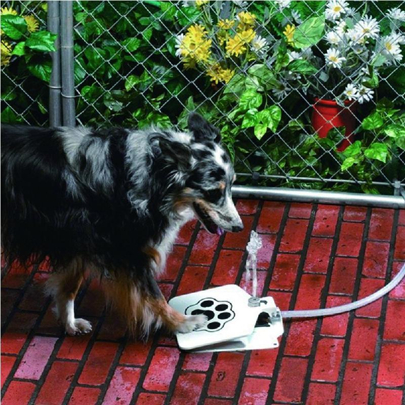 Compare prices on dog spray bottle online shopping buy