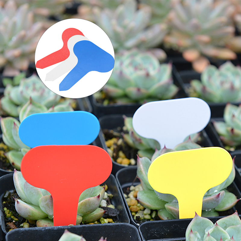2019 New 100 Pcs Garden Plant Labels Plastic Plant T-type Tags Markers Nursery Pots Garden Decoration Seedling Tray Mark Tools