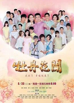 《牡丹花开》2017年台湾剧情电视剧在线观看