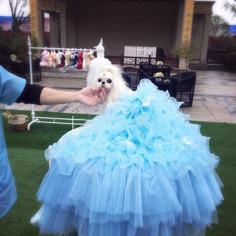 Pet <font><b>Dog</b></font> <font><b>Dress</b></font> <font><b>Wedding</b></font> Party Luxury Princess <font><b>Dress</b></font> Puppy Handmade Embroidery For Small <font><b>Dogs</b></font> Noble Tutu Lace Pearl Pleated Skirts image