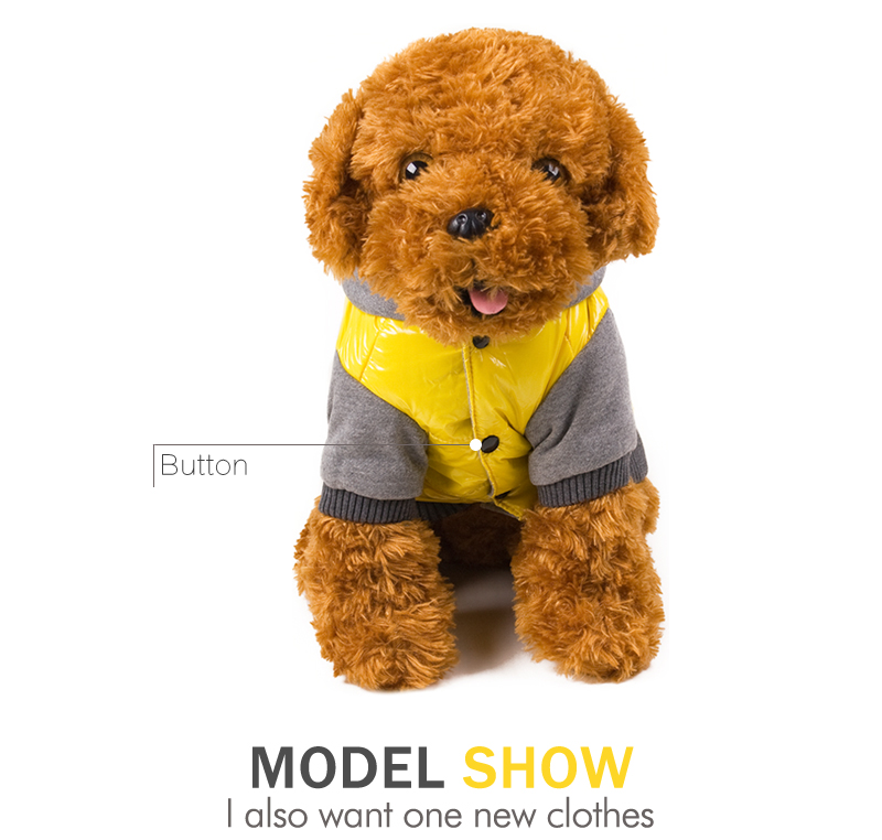 8 dog clothes for small dogs