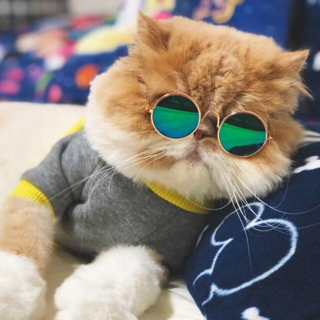 Occhiali di moda Gatto Piccolo Da Sole Pet Grooming Eye-Protezione Contro L'usur