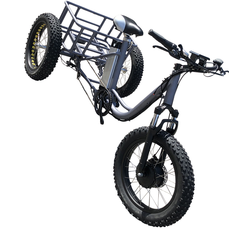 electric bicycle (1)