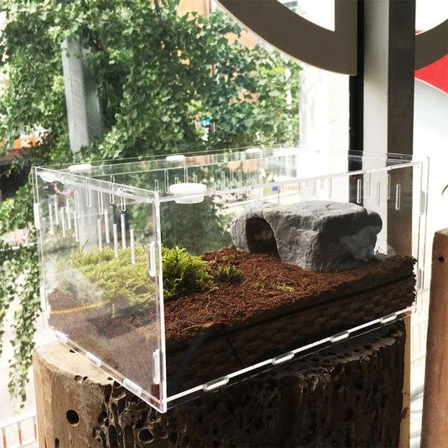 30*20*15cm Reptile Box Transparent Climb Home Decor Insect Cold Blooded Animals Reptile Insect Spider Turtle Tank Breeding Box