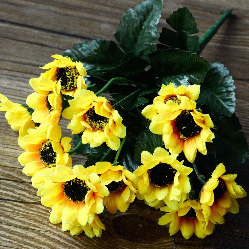 comparer les prix sur sunflower plastic - online shopping