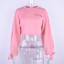 Women Oversized Hoodies Jumper Sweatshirt  Female Pink  Cropped Top 2018 Winter Kawaii Harajuku Embroidery Letter Loose Pullover