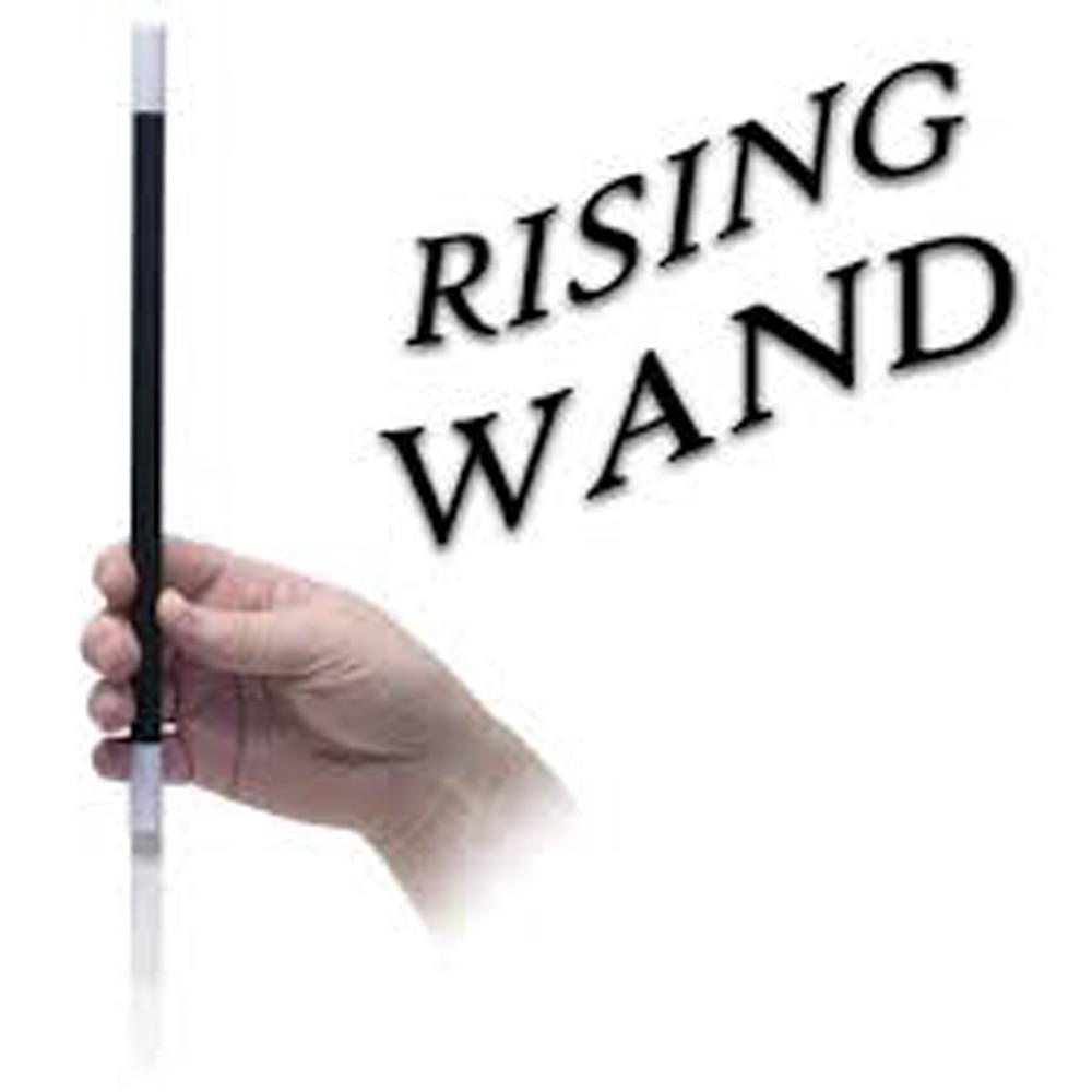 30PCS RISING MAGIC WAND MAGIC TRICKS CLOSE UP MAGIC PROP party magic tricks prop and training set money press