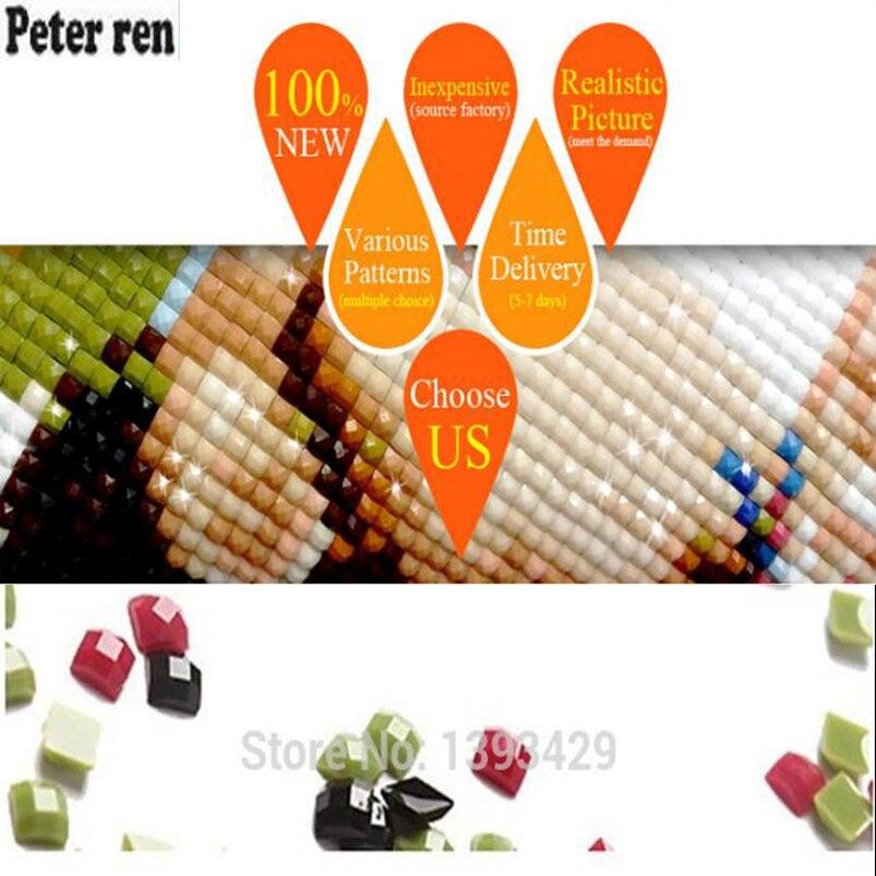 Peter ren DIY diamond painting 5d square rhinestone Diamond embroidery Bird sparrow Diamond mosaic Crafts full crafts Needlework in Diamond Painting Cross Stitch from Home Garden