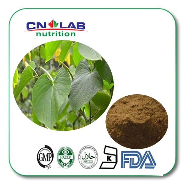 GMP Certified Factory Supply Natural Kava Powder Extract 1kg free shipping gmp factory supply deer antler velvet extract powder 10 1