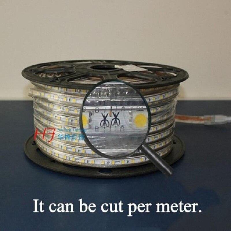 Распродажа 10 м 110 В/220 В Высокое напряжение SMD 5050 RGB Светодиодная лента Водонепроницаемая + ИК пульт дистанционного управления + источник питания - 3