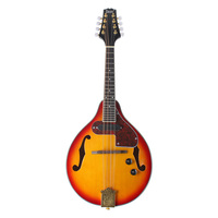 FSTE IRIN 8 String Electric Mandolin A Style Rosewood Fingerboard Adjustable String Instrument with Cable Strings Cleaning Clo