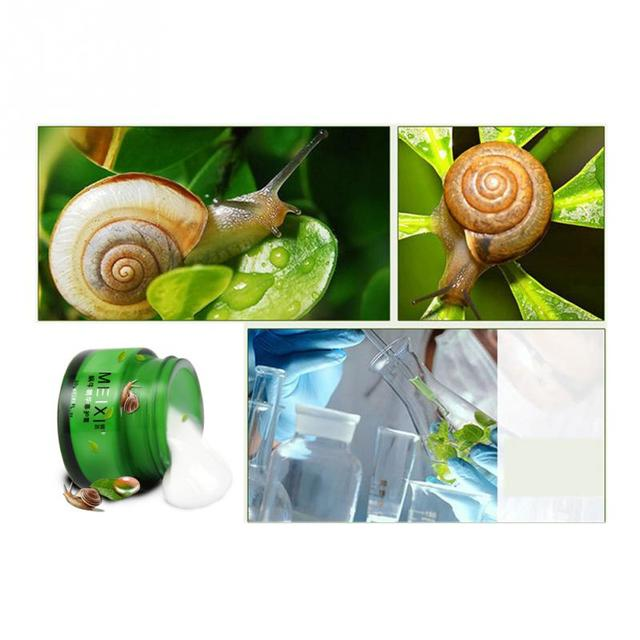 30g Snail Cream Day Cream Face Cream Moisturizing Anti Wrinkles Anti Aging Skin Whitening Face Skin Care 5