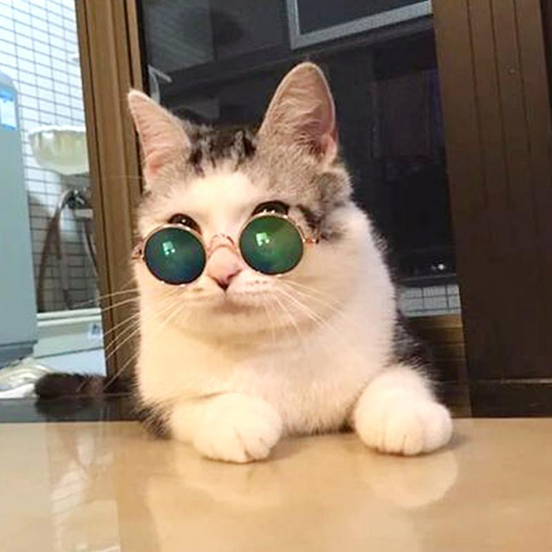 Fashion Glasses Pet Dogs Cat Glasses Sunglasses Eye-wear Protection Pet Cool Glasses Pet Photos Props