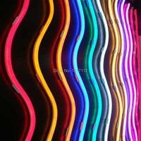 12 V 24 v 120 v 240 v 4.8 w CE & RoHs onaylı RGYB Chasing Led Neon Flex Işık