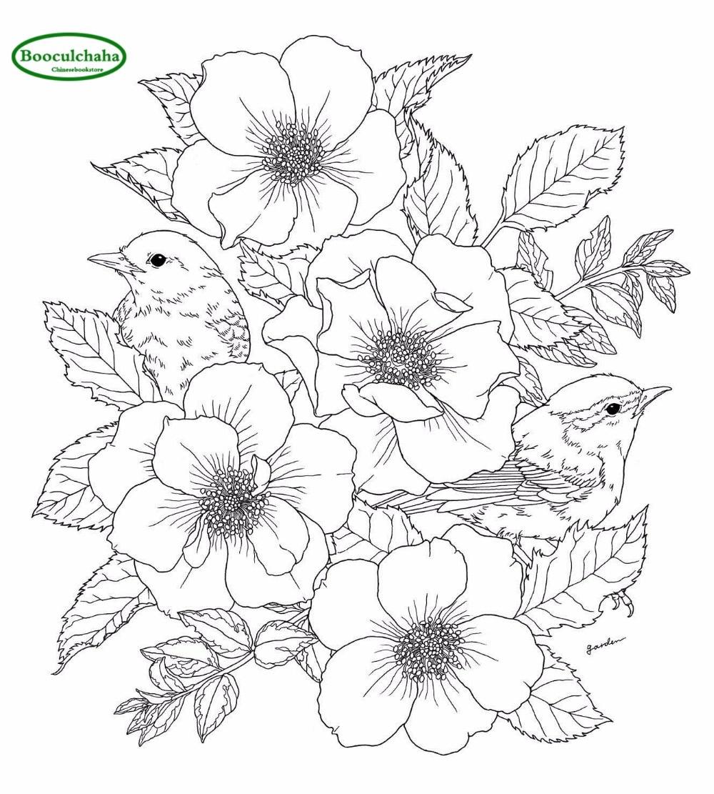 Taman Bunga Burung Anti Stres Mewarnai Buku Mewarnai Buku Dewasa 96