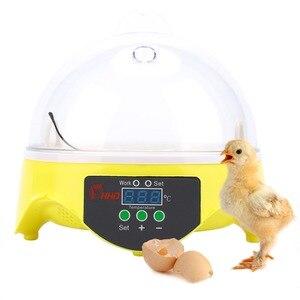 Image 1 - Mini 7 jaj automatyczne inkubatory jaj elektroniczny cyfrowy inkubator toczenie regulacja temperatury dla kurcząt kaczki gęsi przepiórki