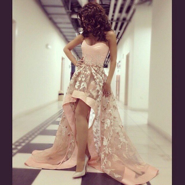 Honey Qiao Myriam Fares Celebrity Dresses 2017 Light Pink Applique Sweetheart High Low Arabic Dubai Abiye Elegant Evening Gowns