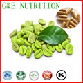 Qualidade superior Por Atacado Verde Coffee Bean Extrato Cápsulas Para Perda de Peso 500 mg x 200 pcs