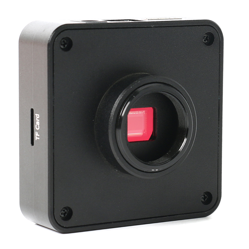 600X Цифровой Микроскоп USB Lcd видео электронный микроскоп камера 4,3 дюймов HD OLED увеличение эндоскопа камера с держателем - 5