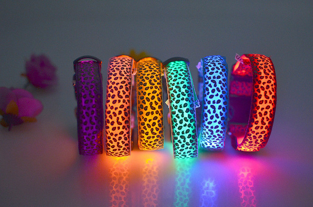 Nylon LED Night Glowing Pet Dog Collar 1