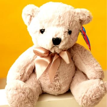 20cm Lovely Seven Colour Rainbow Teddy Bears For Childrens Gift
