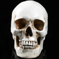 Scary Halloween 1:1 Resin Man White Skull Prop Skeleton Halloween Decoration Simulation Statue Landscape Ornament Reptile Cave