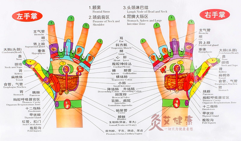 Chart of the hand reflective zone health therapy massage acupuncture acupoints in chinese english cm waterproof free ship  relaxation from also rh aliexpress