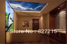 S 5301 1303 Print Deckenplatten PVC Decke Gestreckten Film Home Oder Dekoration Funktion Als Deckenplatte