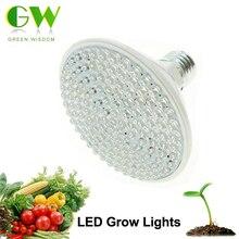 LED Grow Light AC220V 2W 5W 7W E27 Red Blue LED Plant Growth Light for Indoor Plants or Aquarium.