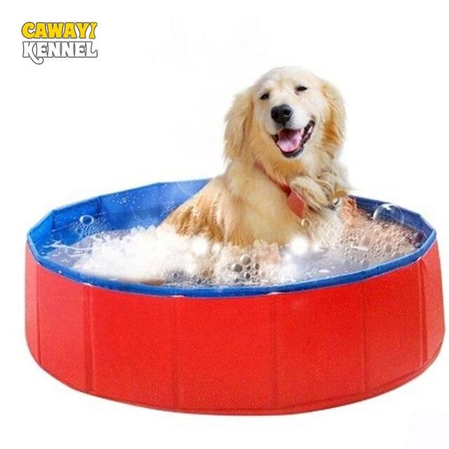 Pet Swimming Pool 1