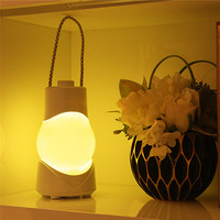 Night Light With Music Box Indoors LED Night Light For Infant Romantic Dinner Wholesale Free Shipping