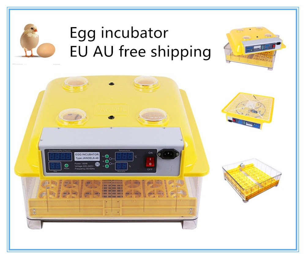 Fast ship from Australia ! Mini 48 Chicken fully Automatic Egg Incubators Sale Auto Turn for Duck Pigeon Quail Parrot top sale household farm egg incubators 24 egg incubators for led display turner for sale