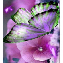 2017 new brand Round Diamonds butterfly print DIY 5D Diamond Painting Embroidery Cross Crafts Stitch Home Decor wholesale A2000