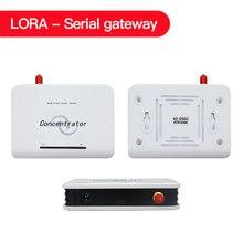 Szeregowy odbiornik/koncentrator LoRa Uart USB dla LoRa czujnik bezprzewodowy 433mhz 868 MHZ/915 MHZ odbiornik czujnika Lora XZ DSG2