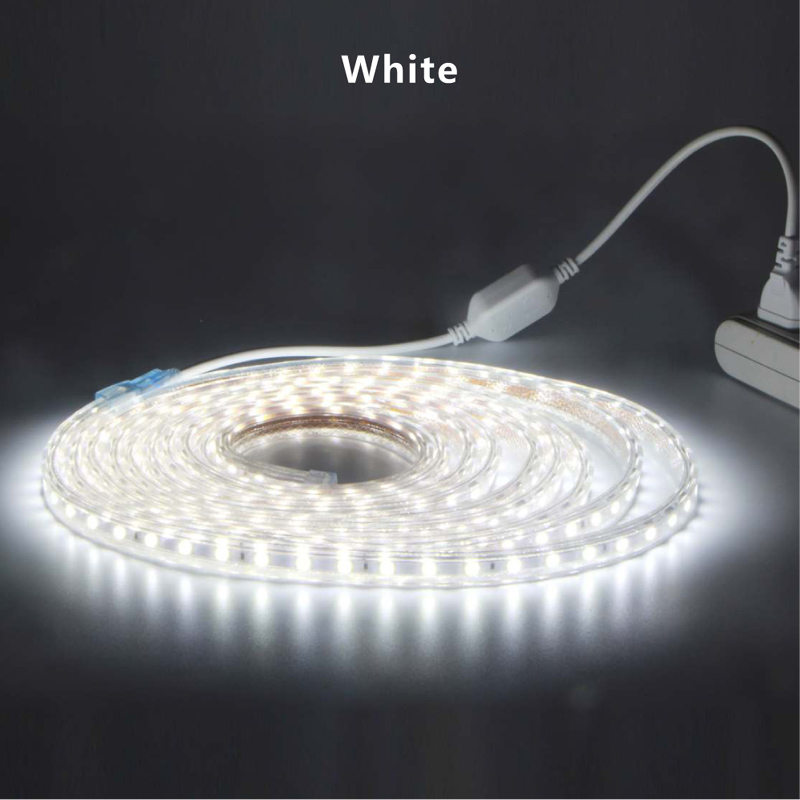 Waterproof Led Strip 5050 White Warm White Blue 220V Flexible Light With Power Plug Tape for