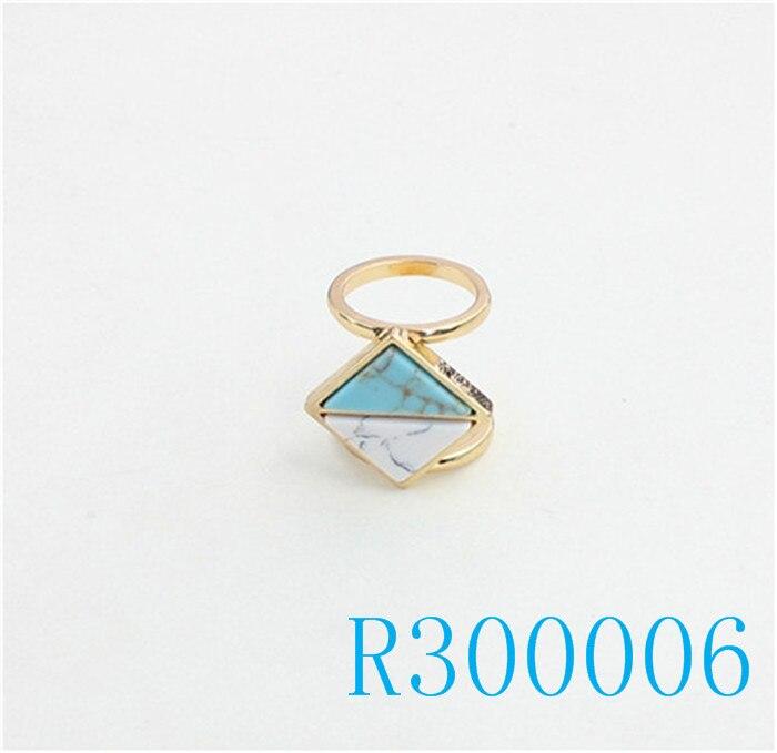 R300006