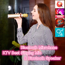 Bluetooth Speaker V4.1 Wi-fi Karaoke Participant Microphone With Mic KTV Singing Document Microphone for Android IOS Telephone Laptop