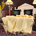 SINONICS 100% Silk Comforter Summer Winter Silk Quilt Four Seasons Duvet Filling Mulberry Comforter Silk Blanket Comforters