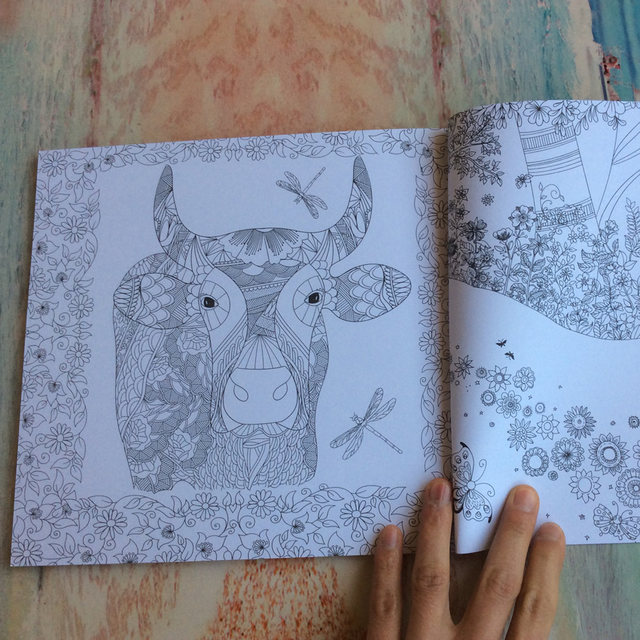 1PC 48 Pages The Enchanted Forest Antistress Adult Coloring Books For Adults Livre Cloriage Kids Art Book